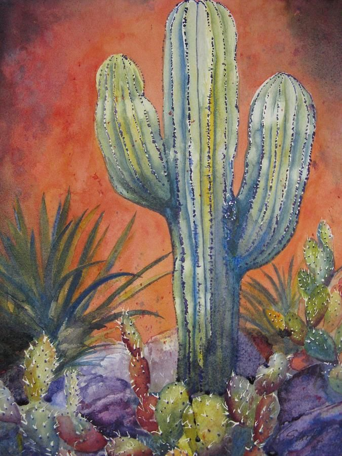 Cacti Painting by Karen Stark - Cacti Fine Art Prints and Posters for Sale