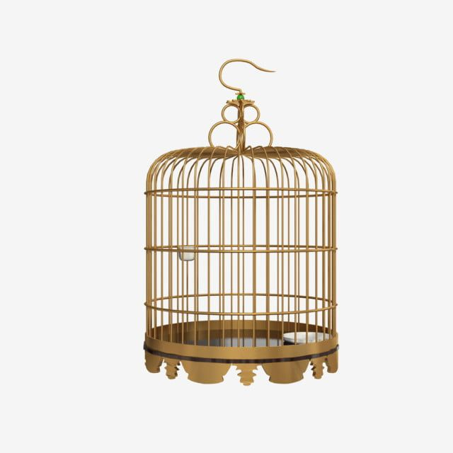 Golden Metal Round Ge Cage Metal Bircage Cage Png Transparent Clipart Image And Psd File For Free Download Metal Font Clip Art Wedding Frames