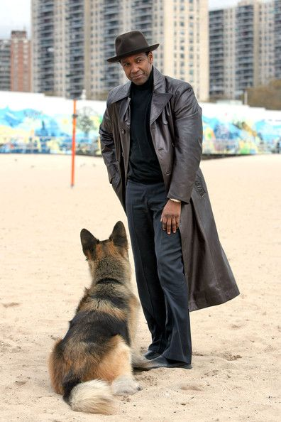 Denzel Washington and his american gangster friend. Great movie, great dog great actor!