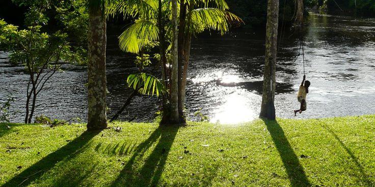 Vlakbij het Surinaamse bos begint de Amazone. Geen wifi-netwerken, wel geïsoleerde dorpsgemeenschappen die leven in het groene hart van de wereld waar nog zoveel planten en diersoorten onontdekt zijn | Photo: de rivier bij Awarradam