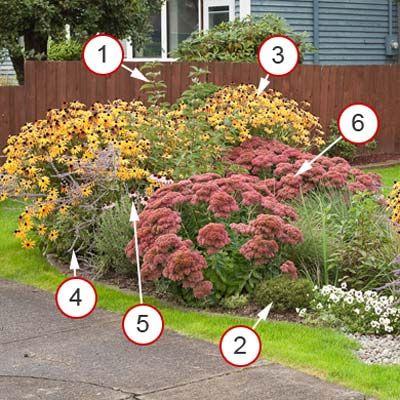 This rain garden suits a dedicated gardener who loves flowers...1. Red-twig Dogwood, 2. Mugo Pine, 3. Black-eyed Susan, 4. Russian Sage, 5. Purple Coneflower, 6. 'Autumn Joy' Sedum