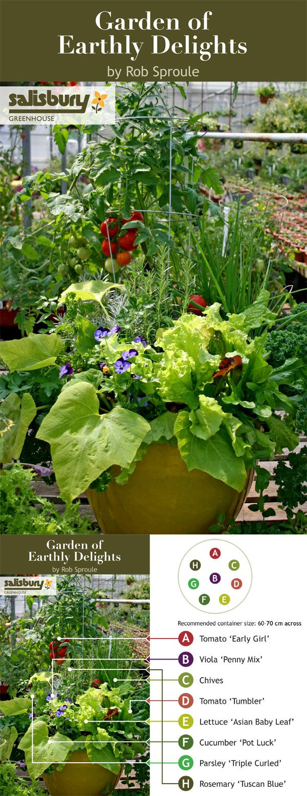 All the ingredients for a fresh #salad in one container? Keep this container close to the door so you can harvest a little and harvest often. Edible Container Gardening for Canada by Rob Sproule.