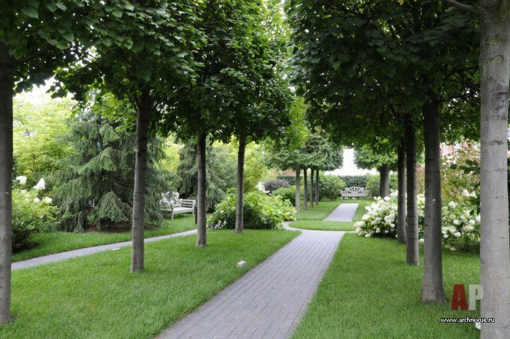 Ландшафтный дизайн участка с деревянным домом   Landscaped area with wooden house