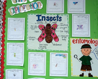insect unit ideas: Grade Science, Schools Ideas, Grade Fresh, Schools Science, First Grade Blog, Insects United, Classroom Ideas, Anchors Charts, Insects Theme