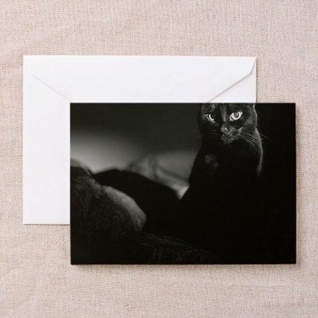 Black cat in dark. Greeting Cards (Pk of 20) on CafePress.com