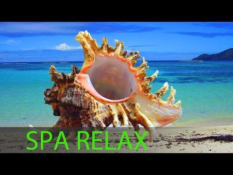Calm Music ★ 9 HOURS ★ Music to RELAX ★ SLEEP Music ★ Relaxing Music - YouTube