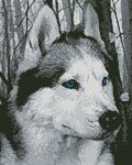 Mini Siberian Husky in the Woods - Cross Stitch Chart