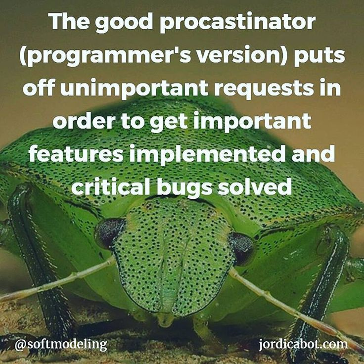 The good procastinator (programmer's version) puts off unimportant requests in order to get important features implemented and critical bugs solved    #bug #bugzilla #feature #issue #issuetracker #programmer #coder #procastinate #code #java #python #ruby #javascript #php