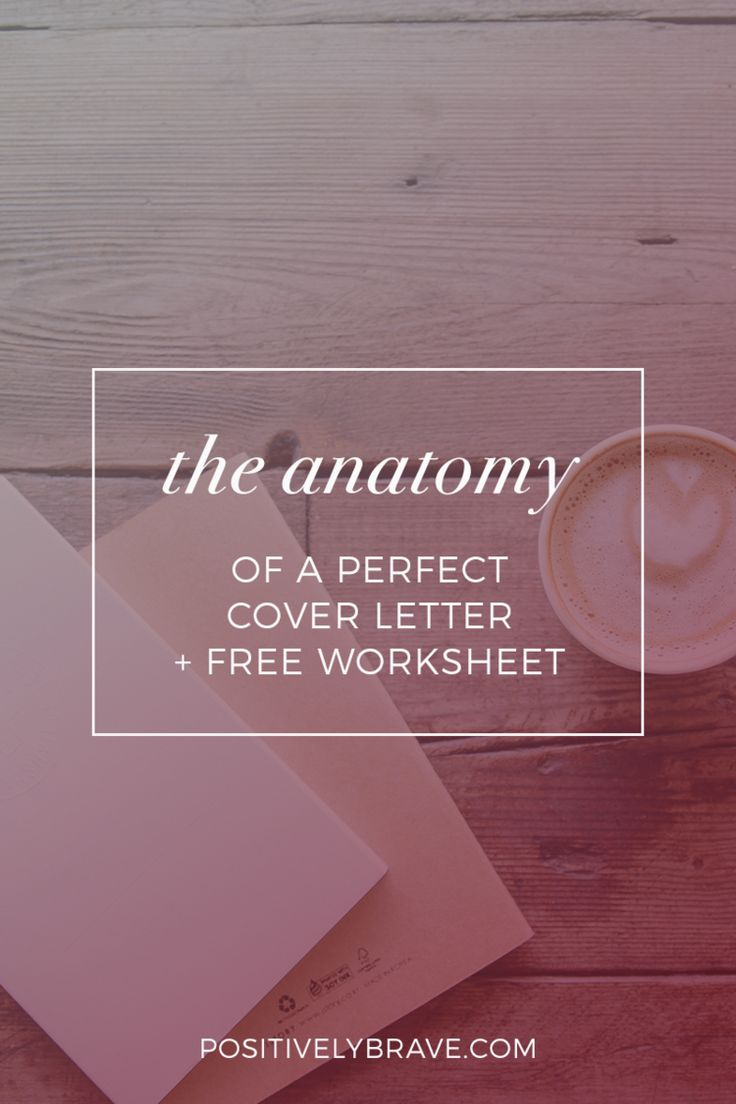 The Anatomy Of A Perfect Cover Letter  How To Write An Amazing