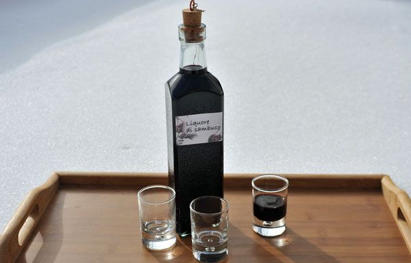 Liquore di bacche di Sambuco