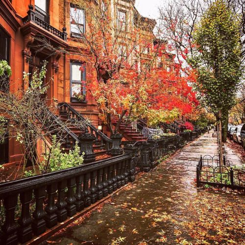 Brooklyn. Autumn. by Vivienne Gucwa @travelinglens | New York City Feelings | Bloglovin'