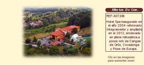 Asturias Hotel con encanto Spa en venta Mestas de Con http://www.lancoisdoval.es/hoteles-con-encanto-en-venta.html