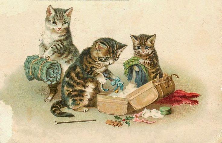 нашёл кошки ретро картинки удаляетесь