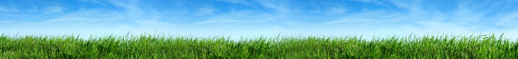Greening Supply Chain Series: Bisphenol A (BPA) in Medical Products: Responding to Health Concerns  June 25, 2013