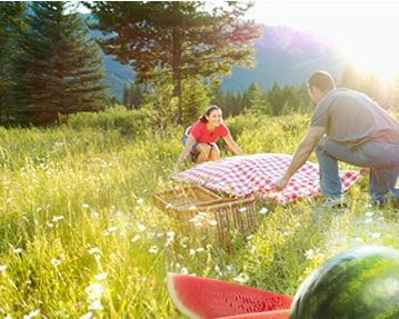 August 3 -- National Watermelon day -- a great site full of stuff all about WaTERMELONS!