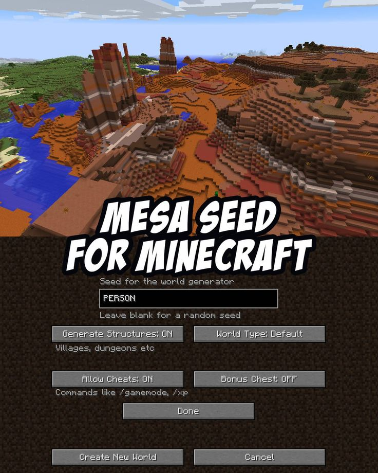Mesa Seed for Minecraft Java (PC/Mac): PERSON