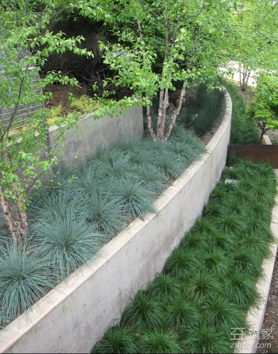 Ground cover for retaining wall levels
