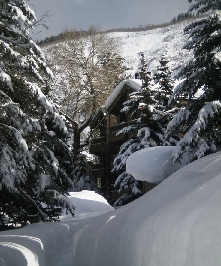 Honeymoon Destinations Rocky Mountains: Best 25+ Colorado Vacation Packages Ideas On Pinterest