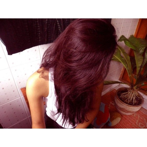 Bought deep burgundy hair dye? ❤ liked on Polyvore featuring beauty products, haircare, hair color, hair, girls, hair styles and hairstyles