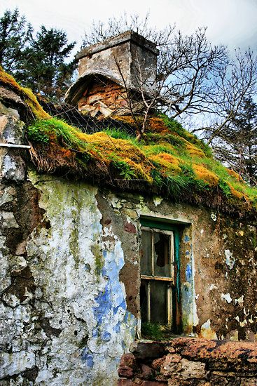 """Rooftop Garden"" by Polly x  FEATURED in Natures Reclaimation, April '09 with thanks  ""I found this beautiful ruined cottage on Achill Island, County Mayo, Ireland. Well on it's way to a fully lawned roof.""  Canon EOS 400D 18-55mm len"