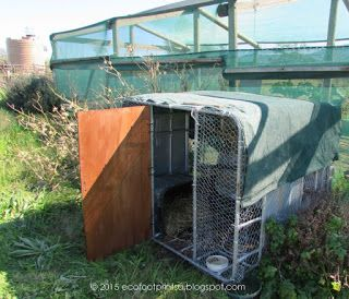 Recycling the metal frame from a water container into a chicken coop - saves us having to purchase the materials to make a traditional one