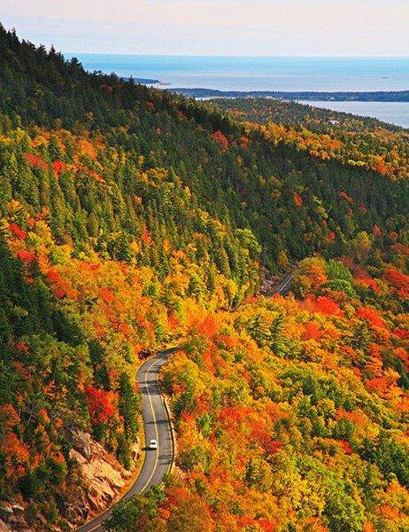 Park Loop Road, Acadia National Park, Mount Desert Island, Maine.