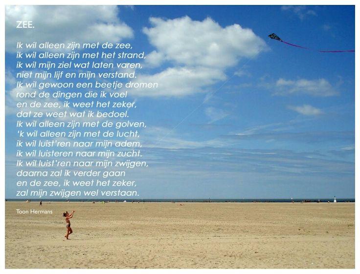 Gedicht Toon Hermans