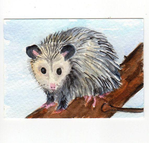 ACEO Original Possum  Watercolor Painting. Oppossum Art Card. $8.50, via Etsy.