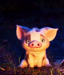 Imagem de pig, gif, and moana