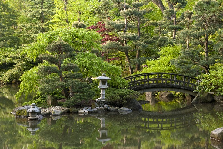 Anderson japanese gardens my wedding - Anderson japanese gardens rockford illinois ...