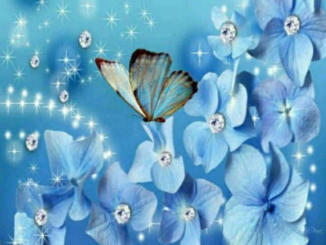 Fluture albastru