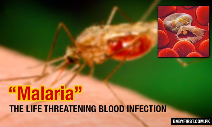 Symptoms of Malaria are felt periodical, they last for 6 to 10 hours in a day. The most commonly observed Malaria symptoms are: fever, headache,vomiting
