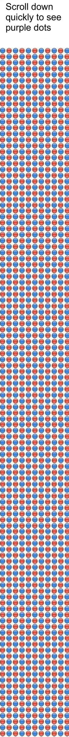 This is because with the pattern of red and blue dots it makes the colours surrounded by each other. With fast movement because red and blue are the colours that make purple when they're blurred together they appear as purple.