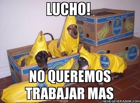 Lucho