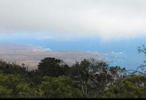 Reserva Nacional Fray Jorge