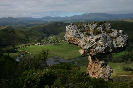 Botlierskop -  Game reserve - Search