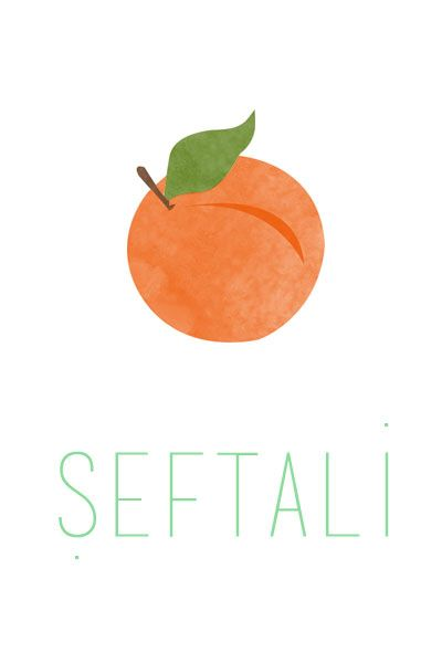 Şeftali İllustrasyon- Peach Illustration