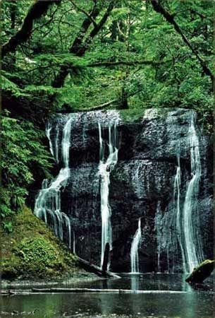 Olympic Peninsula Waterfall Trail  WASHINGTON        an amazingly beautiful state I call home