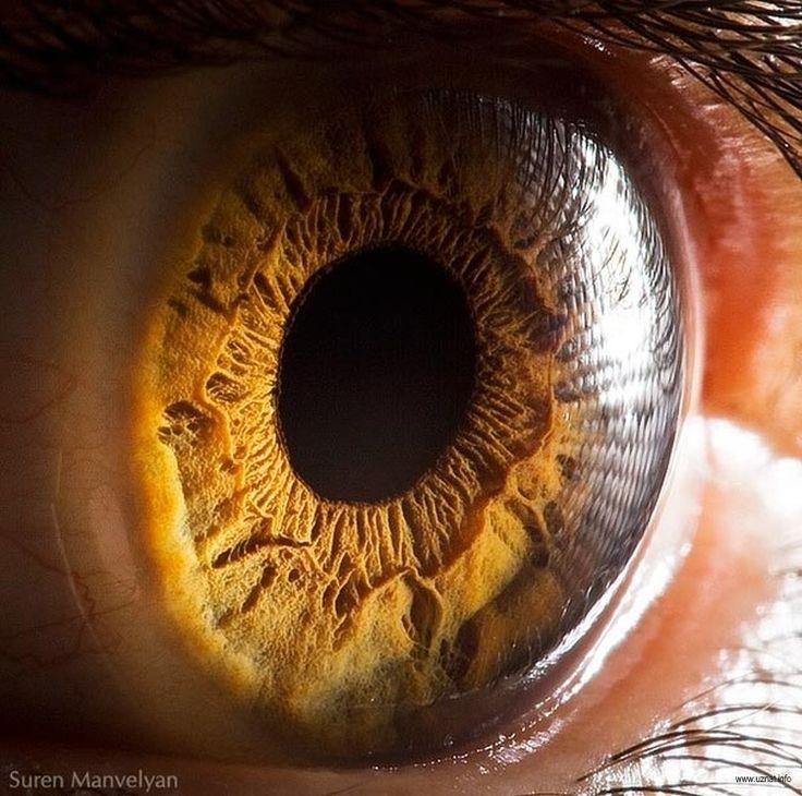 так спектр глаз фото запах испражнений стоит
