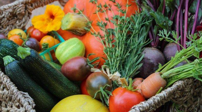 Petit jardin : 5 Bonnes astuces pour augmenter les récoltes