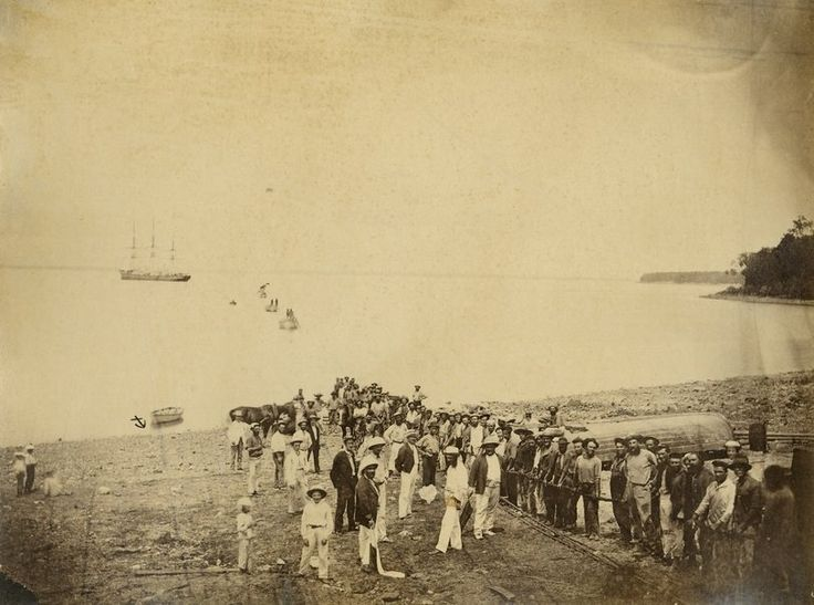 On back of photograph, Landing the cable at Port Darwin. A large group of men are holding the cable, whilst officials look on. 1871