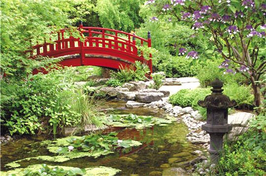 Ce jardin japonais est le seul en France à proposer un espace zen voué à la méditation et à la contemplation à Rueil-Malmaison