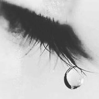 今日も泣いた… なんかいろんな感情が ごっちゃごちゃ 「家族だから…」って言っても 結婚すれば他人になるのかな。 何なんだろう… 家族って何なんだろう。 いろんなことから解放されて 自由になって 帰ってきた途端にこれ…  困った時は 助け合うのが家族だと思ってた。  でも、実際は違った… 現実って厳しいんだね。 いきなり距離が(笑  辛いけど。どうしようもないね 全部あたしが悪いから。  家族ってなんだろう それ以前に自分の存在が よくわからなくなってきた  家族に嫌われたら 自分の存在っていらないに等しい。  何なんだろうね。 ほんと。 じぶんって要らないんじゃないのかな。 必要の無い人間なのかな? 邪魔なだけなんだろうね  なんか色々と疲れたなー。 10代の時に感じた疑問が30前にもなって 湧き出てくるこの感じ  でも、その時に助けてくれる 私を必要としてくれる 愛猫がいる…  慰めようとしてないだろうけど。 泣いたら寄り添ってくれる。 普段は自分から 寄ってきてくれないのに 心がしんどいなって 感じたら察するのか  寄り添ってくれる  曲にも助けられてるな……
