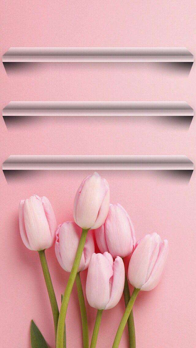 25 Best Ideas About Wallpaper Shelves On Pinterest