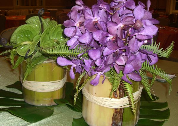 Orchid-Antherium-in-Banana-Stalks