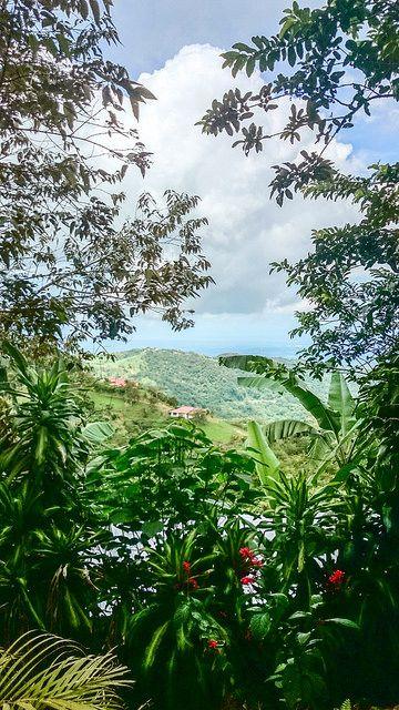 San Ramon de Alajuela, Costa Rica. https://www.facebook.com/International.Living
