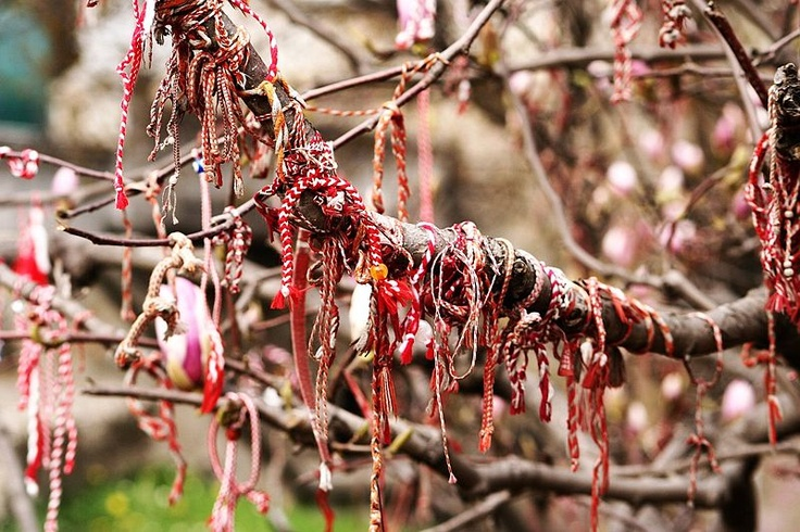 The first of March is a celebrated day in Bulgaria, symbolising the arrival of Spring. Bulgarians exchange coloured threads (Martenitsa) to be worn until a blossoming tree or stork is seen. The Martenitsa are then hung from the branches. Happy Baba Marta!