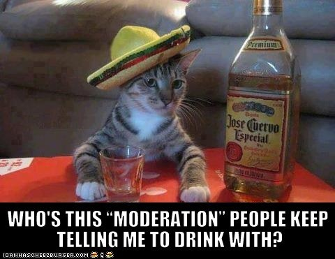 Haa exactly!Friends, Tequila, Cincodemayo, Funny Cat, Mexicans Parties, May 5, Funny Animal, Jose Cuervo, Drinks