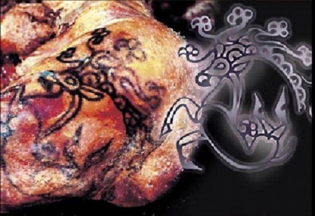 Prinsessens og hendes to krigeres tatoveringer forestiller alle mytiske dyr og har sandsynligvis været en måde at vise status på. (Foto: Siberian Times). Kvinden tilhørte det uddøde Pazyryk-folk i Sibirien og var mellem 25 og 28 år, da hun døde for cirka 2.500 år siden.