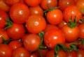 La révision du prix de la tomate saisonnière destinée à la transformation, figure parmi les revendications des agriculteurs de la région de Zaghouan évoquées lors d'une séance de travail tenue, samedi, au siège du gouvernorat, avec le secrétaire d'Etat à l'Agriculture, Habib Jemli. Autres revendications, la restitution des terres agricoles spoliées dans l'ancien régime, le [...]